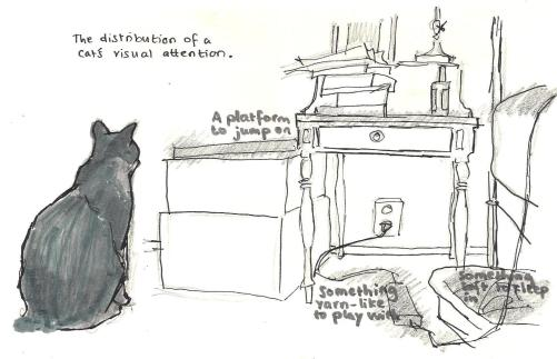 CatVisualAttention